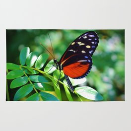 Tiger Longwing Butterfly Rug