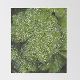 Water drops on fresh green Leaf Throw Blanket