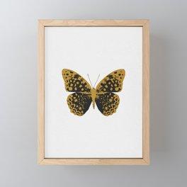 Black Butterfly Framed Mini Art Print