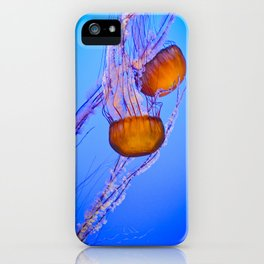 Pacific Coast Jelly iPhone Case