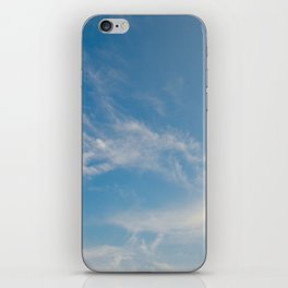Hummingbird Cloud by Teresa Thompson iPhone Skin