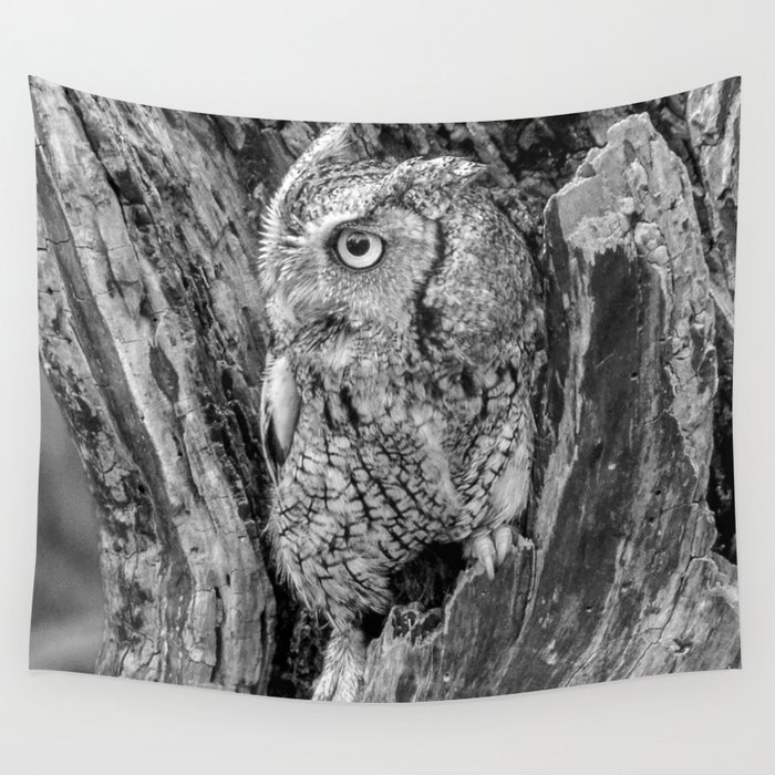 Echo the Screech Owl by Teresa Thompson Wall Tapestry