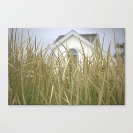 A scene From The Lake Canvas Print
