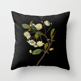Prunus Cerasus Mary Delany Vintage Botanical Paper Flower Collage Throw Pillow