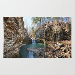 Alone in Secret Hollow with the Caves, Cascades, and Critters - Approaching the Falls Rug