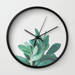 Crassula Wall Clock
