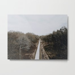 New Forest Metal Print