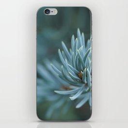 Blue spruce iPhone Skin