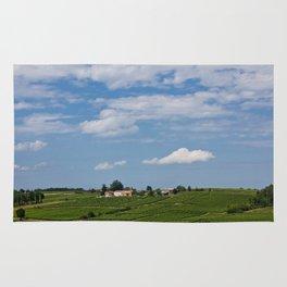 landscape in southern france Rug