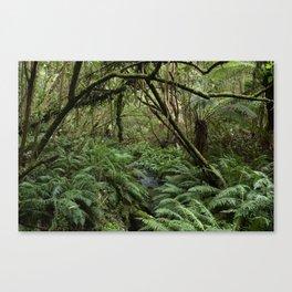 Australian Jungle Canvas Print