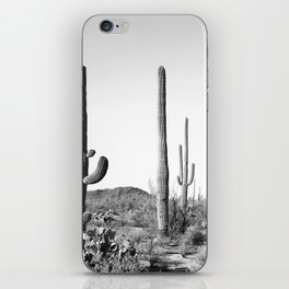 Grey Cactus Land iPhone Skin