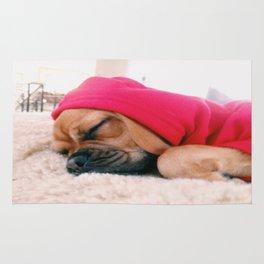 Hank sleeping, softly Rug