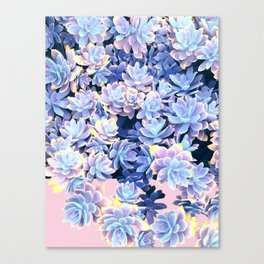 Cactus Fall - Blue and Pink Canvas Print