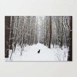 Dog in the snowland Canvas Print