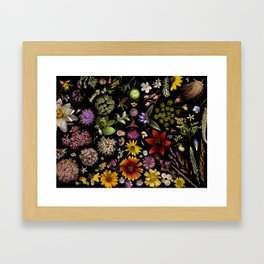 Flowers of Plants Native to Manitoba, Canada Framed Art Print