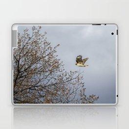 Red Tailed Hawk In Flight Laptop & iPad Skin