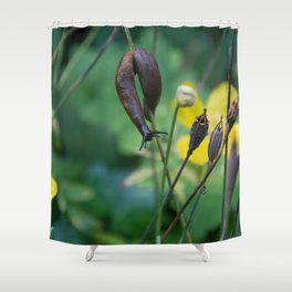 slug dancing on a poppy Shower Curtain