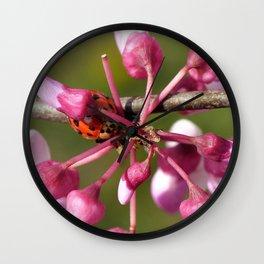 Flowering Redbud with Ladybug Wall Clock