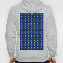 flag of montana 2-america,usa,big sky, treasure state,montanan,west,billings,missoula,great falls Hoody