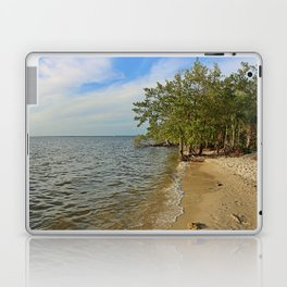 Gathering at the River II Laptop & iPad Skin