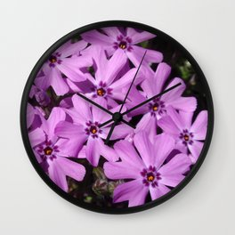 Phlox Flowers Wall Clock