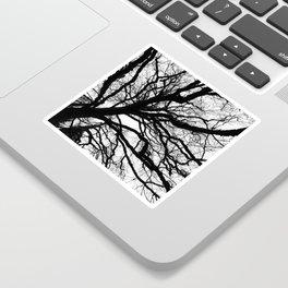 Tree forest wall art, trending minimalist Art, Minimalist, Black and White, Trees simple Sticker