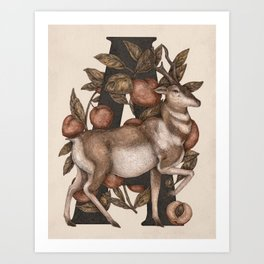 Letter A: Antelope & Apricots