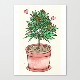 for the love of cannabis Canvas Print