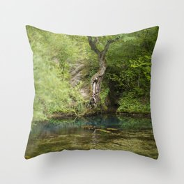 River spring in the forest Throw Pillow