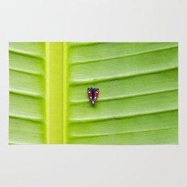 Alone on the leaf. Rug