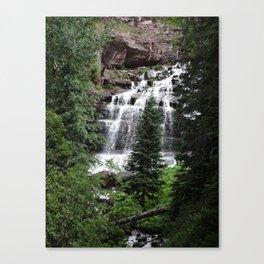 Cascading Canvas Print