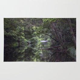 Freshwater Creek Rug