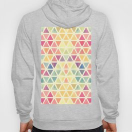 TRIANGLE--COLOR Hoody