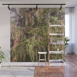 Woolly Spruce Wall Mural
