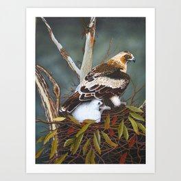 Eagle & chick Art Print