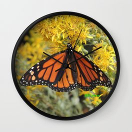 Monarch on Rubber Rabbitbrush Wall Clock