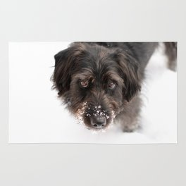 Snowy Charlie Rug