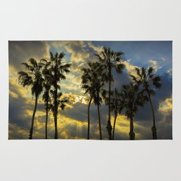 Sunbeams and Palm Trees by Cabrillo Beach Los Angeles California Rug