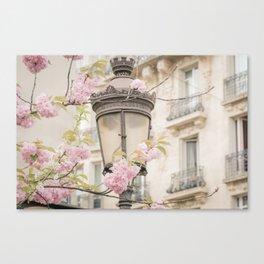 Spring Blooms in Paris Canvas Print
