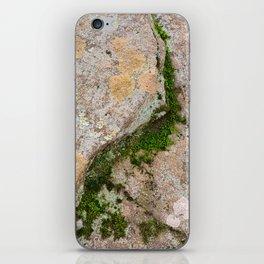 Yin Yang Moss Stone iPhone Skin