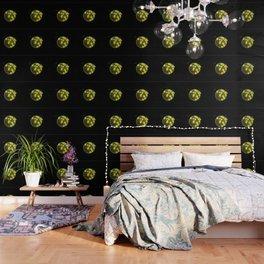 Globe Algae in Orbit Wallpaper
