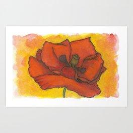 Early Summer Poppy Watercolor Art Print  Art Print