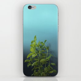 Shy and charming basil iPhone Skin