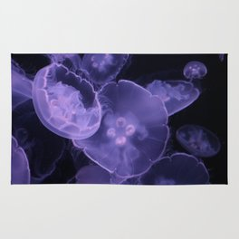 A Jellyfish Bloom Rug