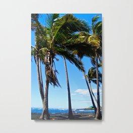 Hawaii Palms Metal Print
