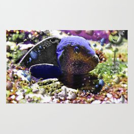 Wild Fishy Story By A Blue Fish Rug