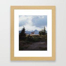 Surprise Encounter Framed Art Print
