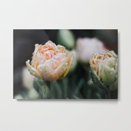Returning Spring Metal Print