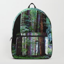 Muir Woods 2 Backpack