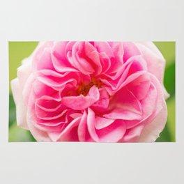 Pink Rose On A Natural Green Background #decor #society6 #buyart Rug